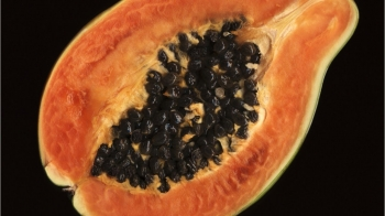 Salmonella Outbreak Connected To Papayas