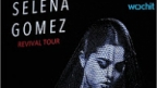 Man Sexually Assaulted Teen At Selena Gomez Concert