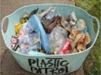 WHO: Microplastics Don't Currently Pose Health Risks