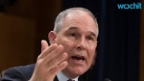 Trump EPA Pick Promises to Review Fuel Efficiency Rules