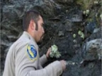 Succulent Poachers Are A Growing Problem In Northern California