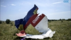 Germany Says Pro-Russian Rebels In Ukraine Downed MH17 With Captured Missiles