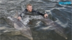 Mexico's 'swim With Dolphins' Sites Criticized by Animal Rights Groups, Environmentalists